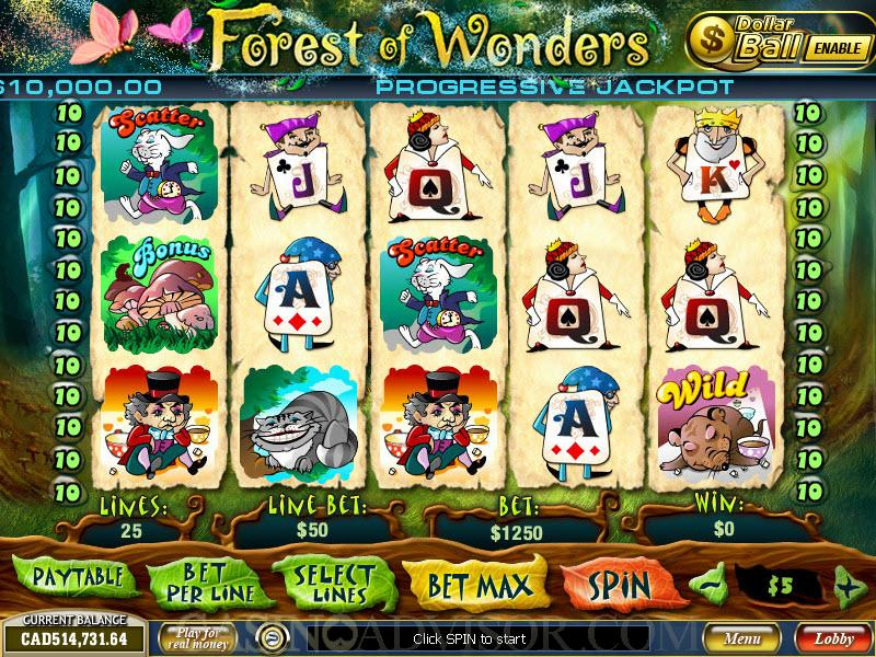 Forest of Wonders - 447704
